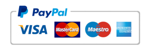 PayPal payment for web design services