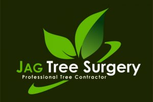 logo-design-local-sheffield-tree-surgeon