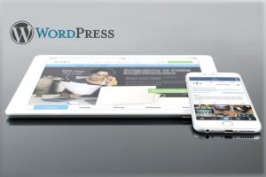 web-design-wordpress-cms-1