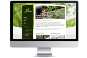 Website Design Sheffield business web design